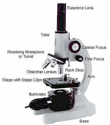 microscope parts microbus microscope educational website